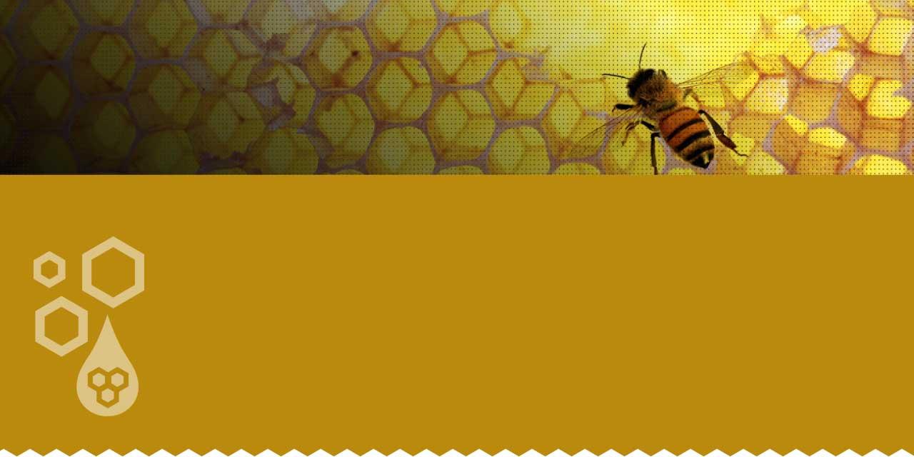 Koster Keunen Beeswax